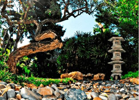 The Kid On The Go - Miami Beach Botanical Gardens