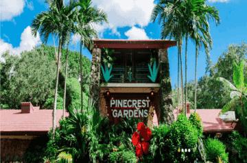The Kid On the Go - Pinecrest Garden1
