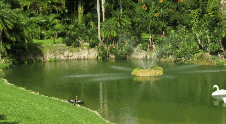 The Kid On The Go - Pinecrest Garden