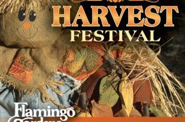 Flamingo Garden - Harvest Festival 2020