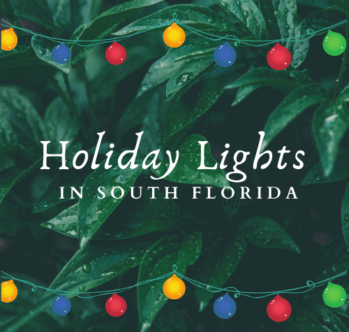 Holiday Lights in South Florida - 2020