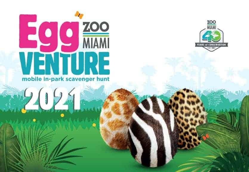 Zoo MIami - Egg Venture 2021