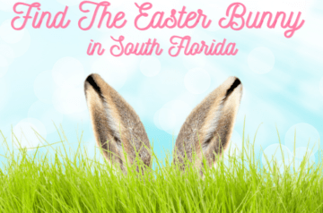 Where To Find The Easter Bunny in South Florida