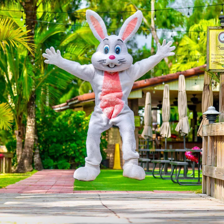 Pintos Farm - Easter 2021