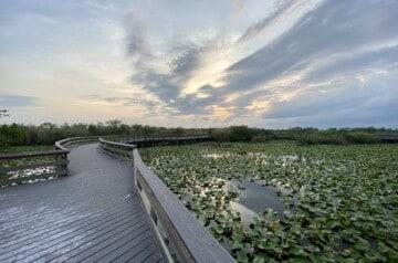 Everglades National Park - location