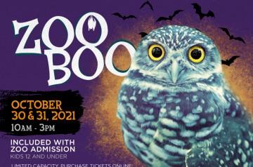 Zoo Miami - Zoo Boo - 2021