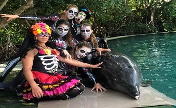 Miami Seaquarium - Happy Haunting - Halloween